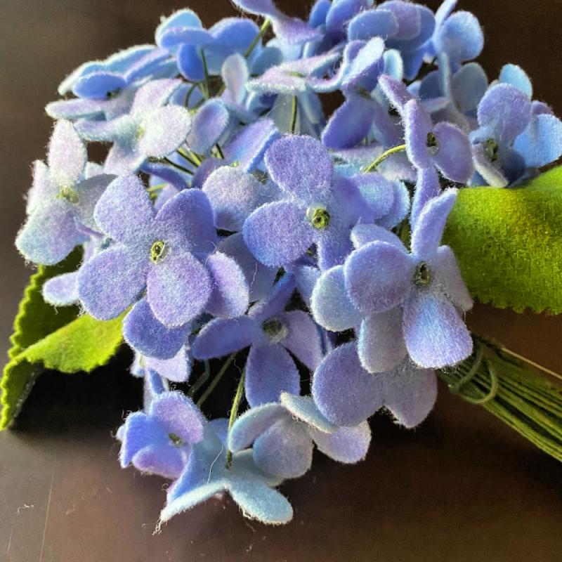 Closeup-blue-hydrangea